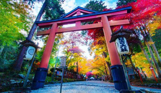 色とりどりの紅葉が輝く場所〜滋賀県 日吉大社の紅葉