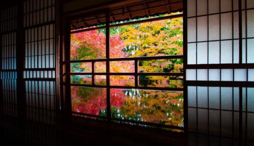 鮮やかに映る紅葉のリフレクション〜滋賀県 旧竹林院の紅葉