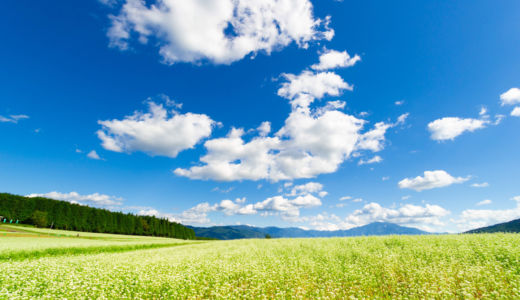 栗で有名な中津川で、秋の写真スポット発見!見渡す限り真っ白なそばの花が咲き誇る高原へ行ってきました~岐阜県中津川市 椛の湖(はなのこ)自然公園